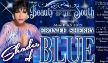 2nd Annual Miss Beauty of the South
