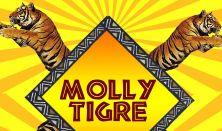 Molly Tigre