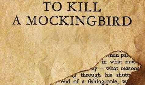 to kill a mocking bird mwds From a general summary to chapter summaries to explanations of famous quotes , the sparknotes to kill a mockingbird study guide has everything you need to.