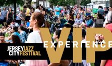 VIP Festival Experience