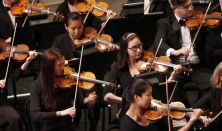 Holiday Pops with Gainesville Orchestra